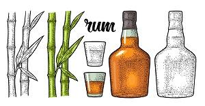 Rum Ratgeber
